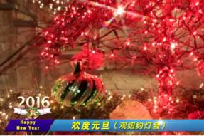 [视频]欢度2016元旦之纽约灯会