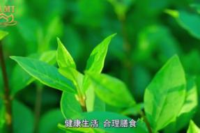 [视频]蜂蜜的妙用