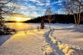 严寒中那温暖的阳光